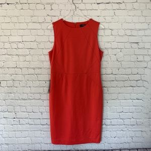 NWT The Limited Coral Sheath Career Dress